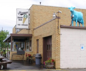 best ice cream in allegan county michigan