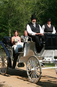 The bride and groom sit in a horse drawn carriage