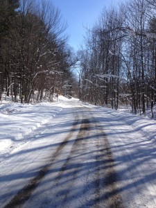 Michigan bicycle trail