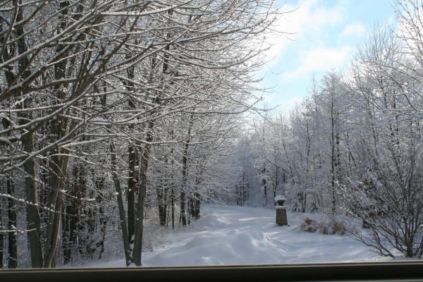winter activities in Allegan Michigan