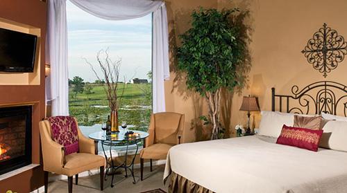 Romantic suite in Southwest Michigan
