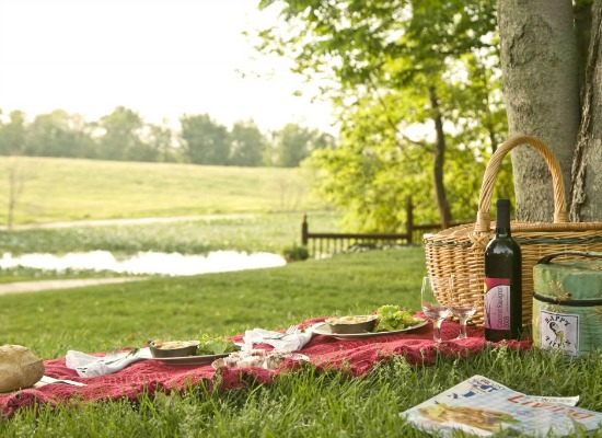 enjoy a special package with a picnic at top Michigan bed and breakfast