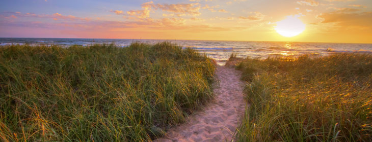 sandy path leading to the beach at sunset