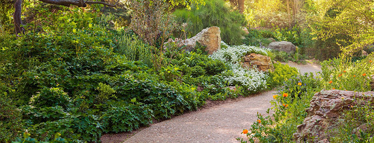 Stone path through gardens
