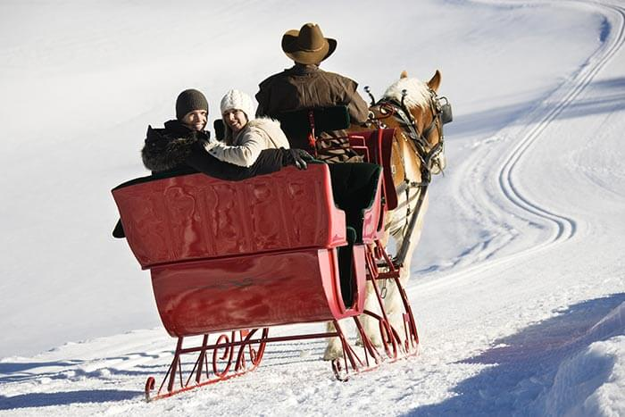 Sleigh ride during a winter getaway in Michigan