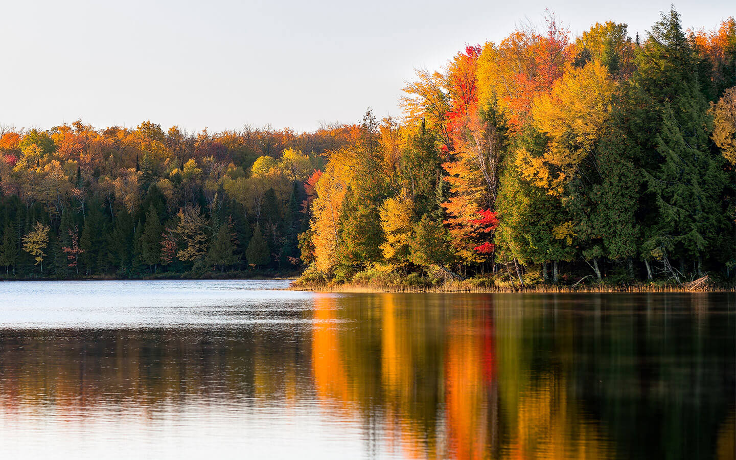 Beautiful fall colors on the lake at a fall weekend getaway