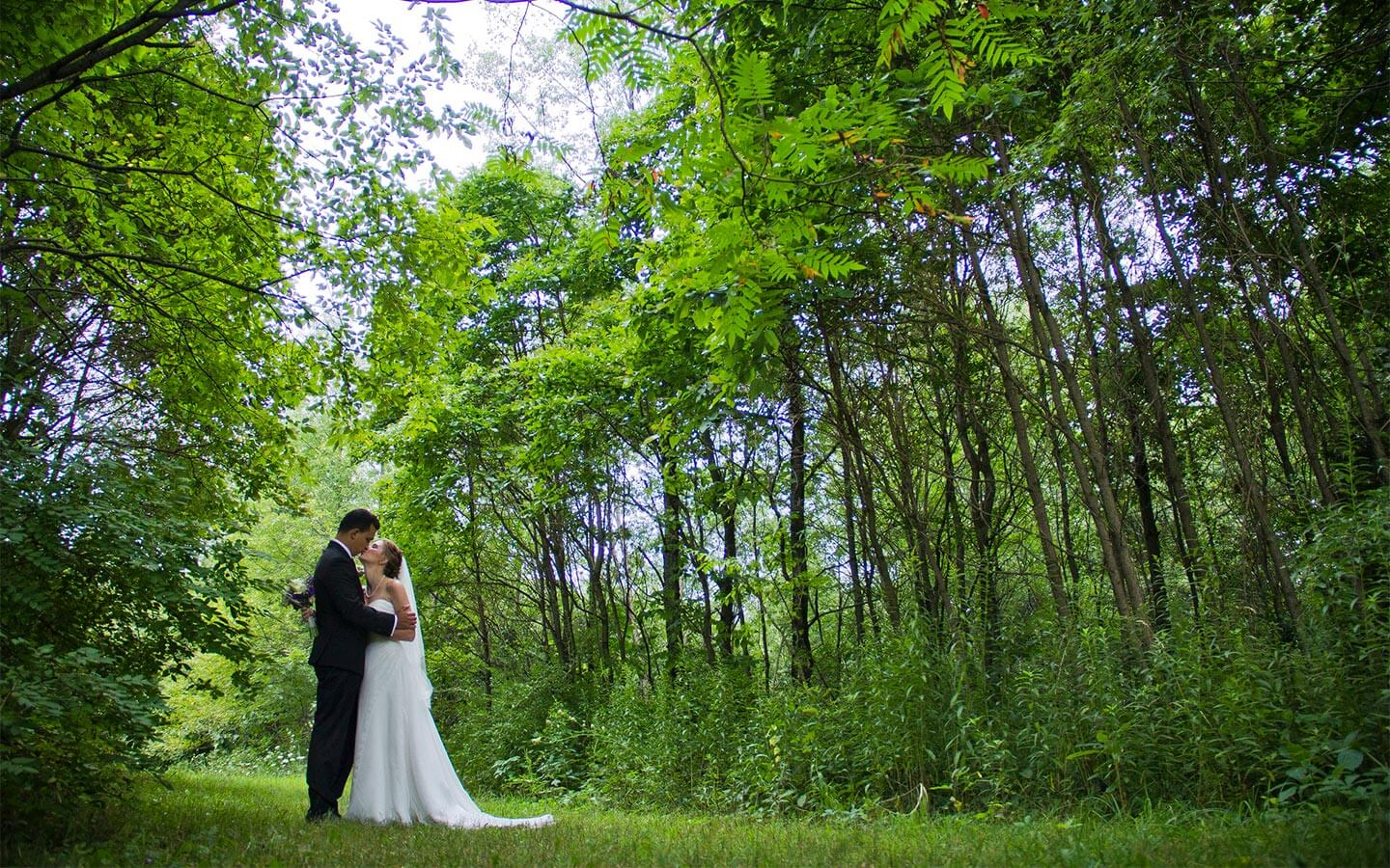 Michigan wedding in Summer, bride and groom in the meadow