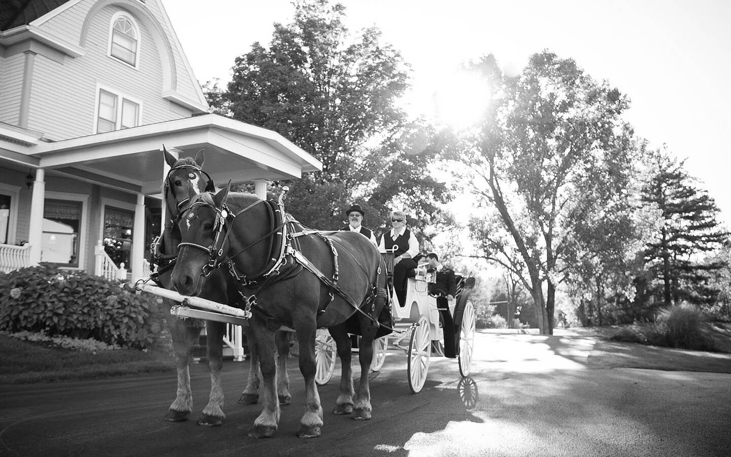 Michigan Wedding, horse carriage