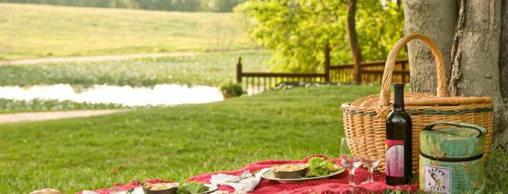 Spring picnic on green grass