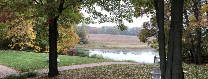 View of the lake surrounded by trees in the fall